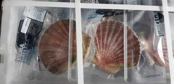 vieira mariscos gallego