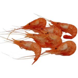 camarón-mariscos-gallego