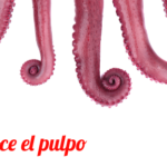 pulpo-gallego