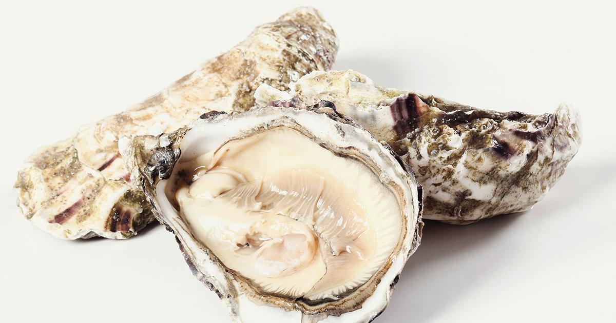 sopa de ostras con cigalas y nueces de macadamia