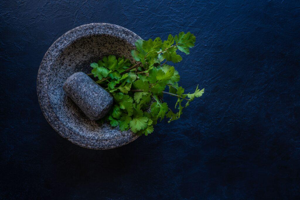 El cilantro le queda genial a esta receta de navajas a la plancha en formato de bocadillo