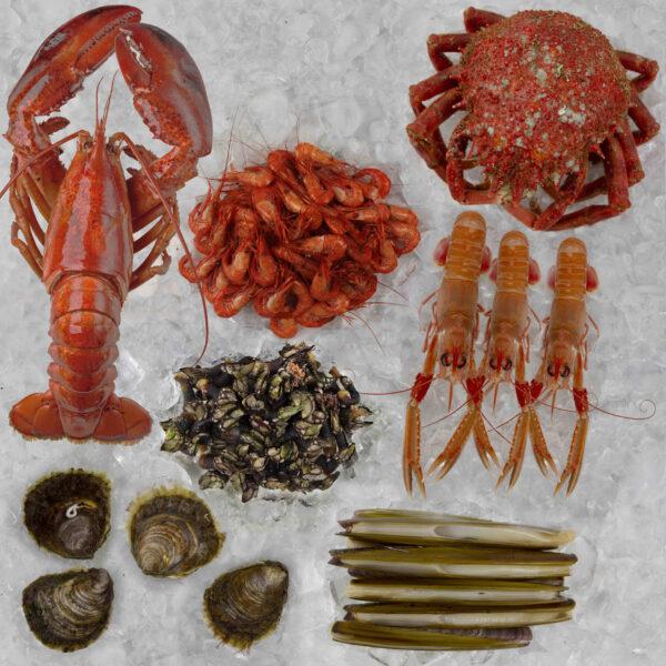 Mariscada premium de marisco gallego para dos personas