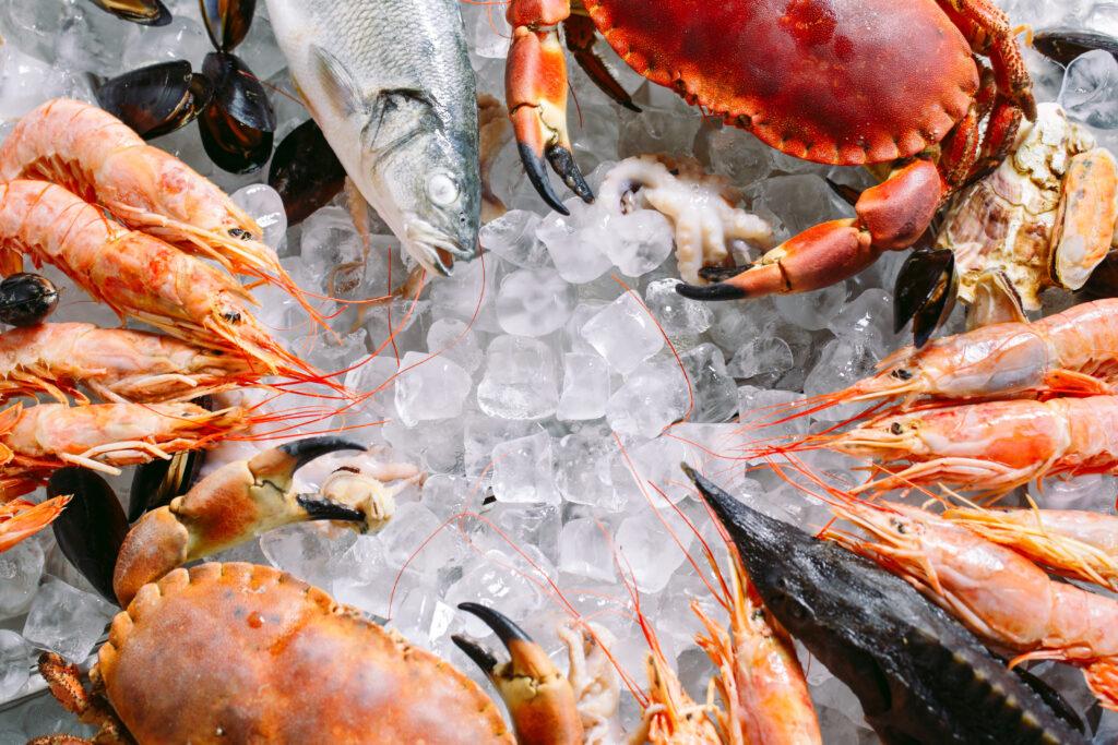 el buey de mar adora comer otros crustáceos y moluscos