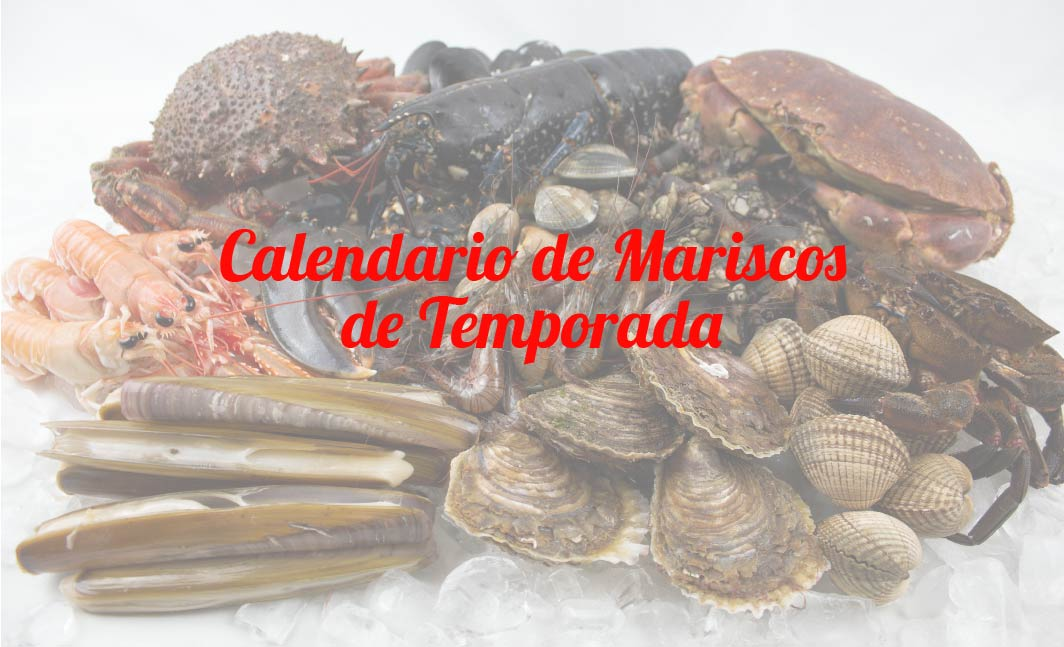 Marisco gallego de temporada: calendario de mariscos