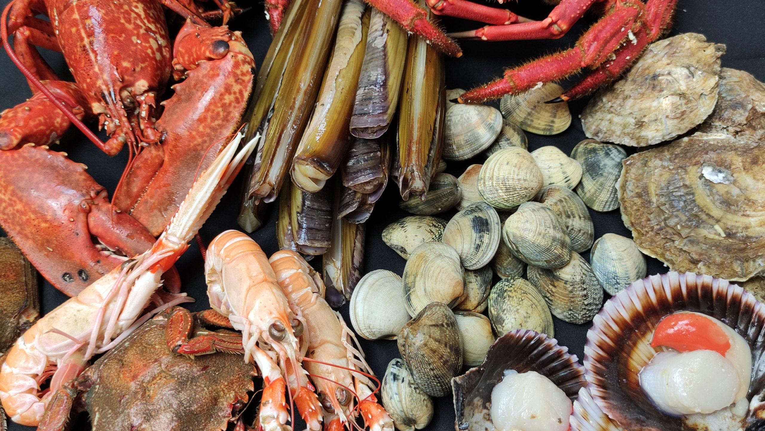 Cómo comer marisco