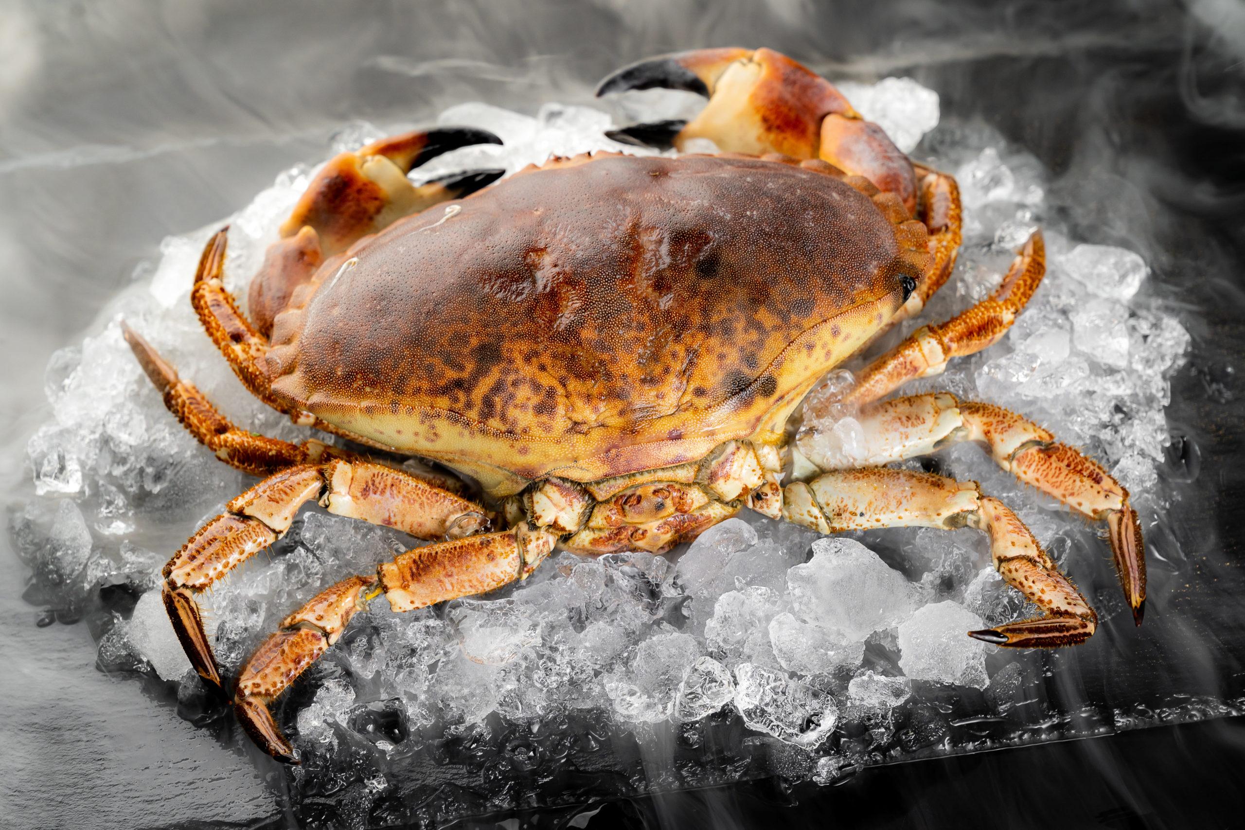 recetas buey mar